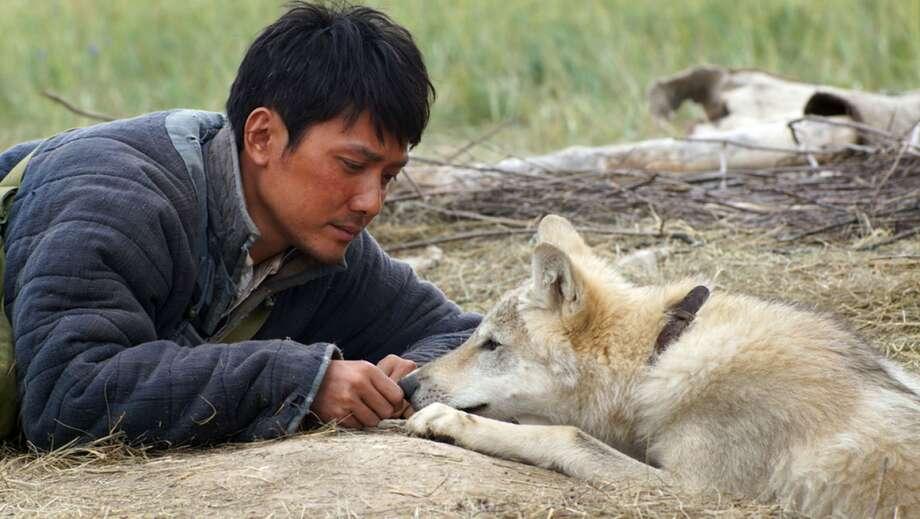Photo: Wolf Totem