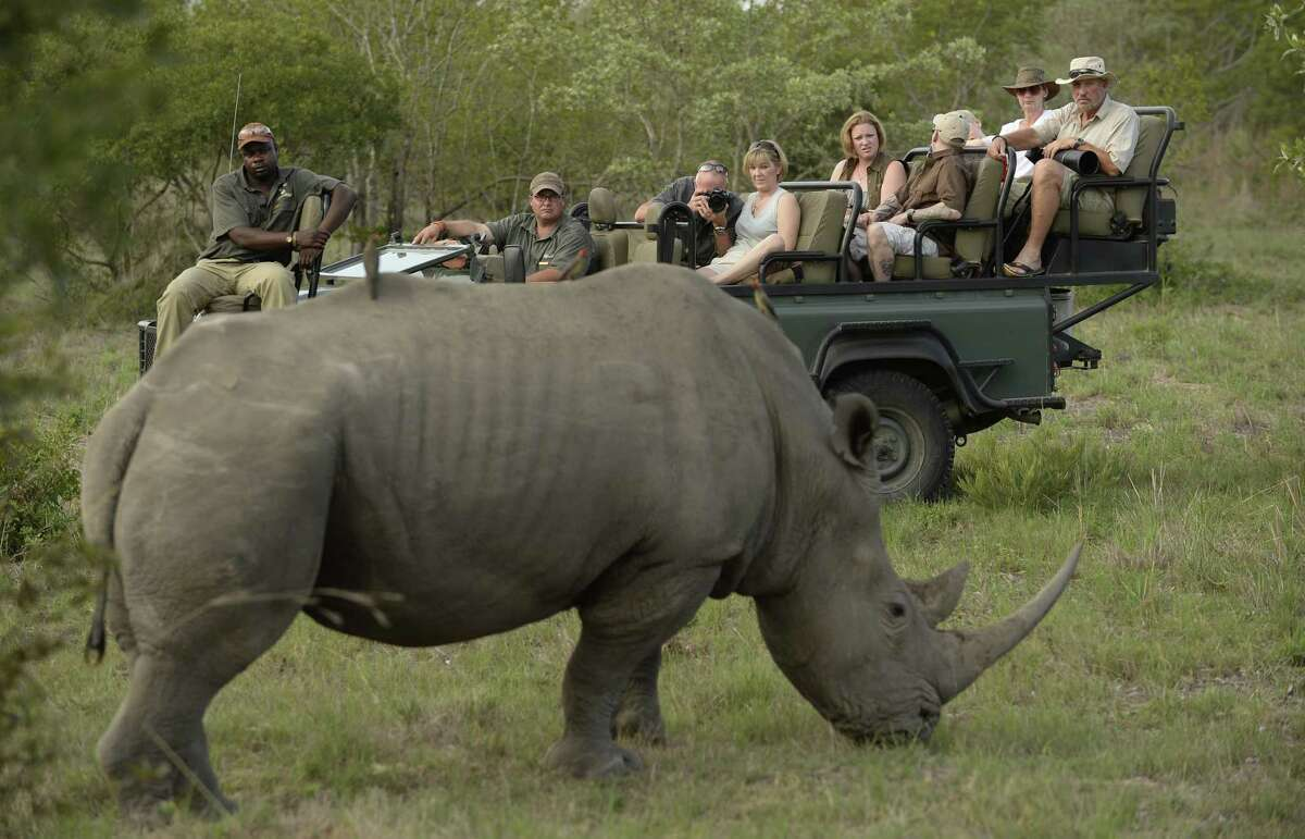 In this handout image provided by Philip Brown, Sir Ian Botham (R) and Lady Kathy Botham watch a rhino after completing the 'Beefy Walking the Rainbow Nation' charity walk on December 19, 2015 in Sabi Sands, South Africa. (Photo by Philip Brown via Getty Images)