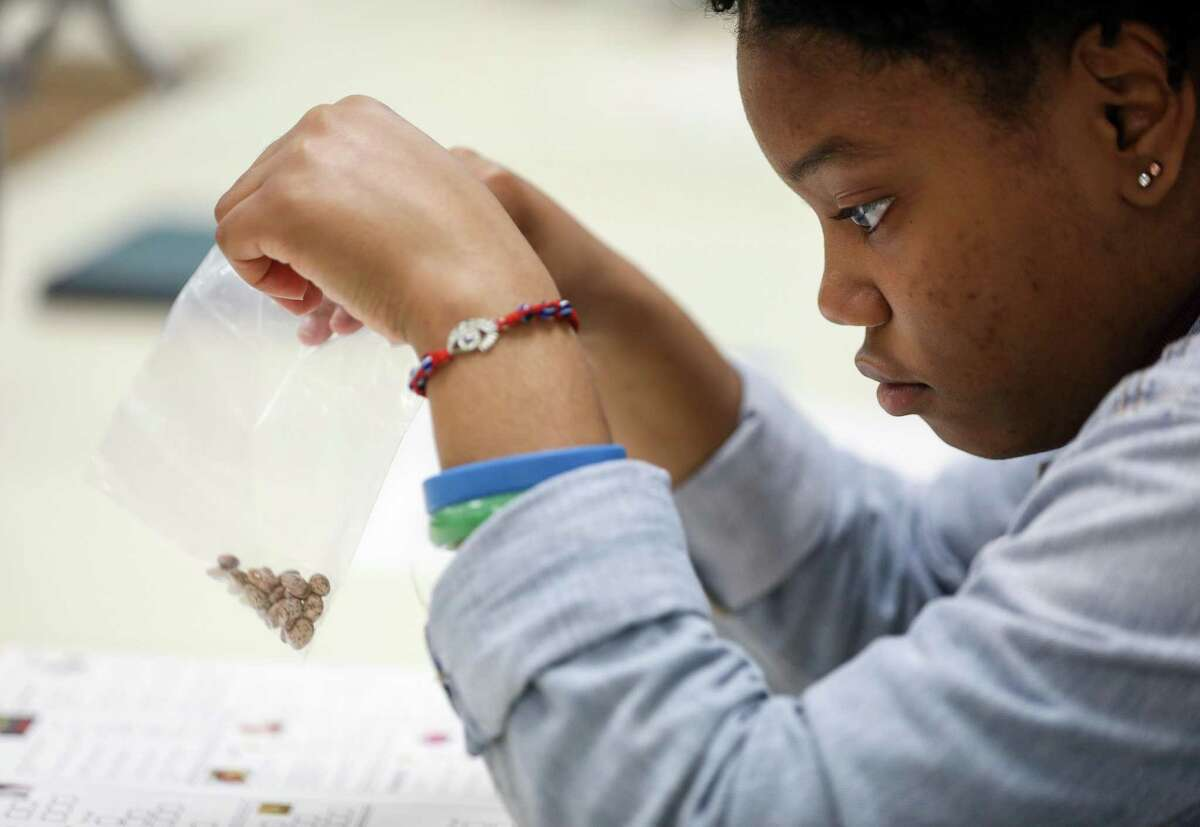 Eyanni Waterman, 17, works on a budgeting exercise in a global business at a Texas high school. Loyola University law professor Lauren Willis makes a strong case that financial education programs do not work. Well, at the very least, she finds that no well-constructed academic study has effectively proven they work.