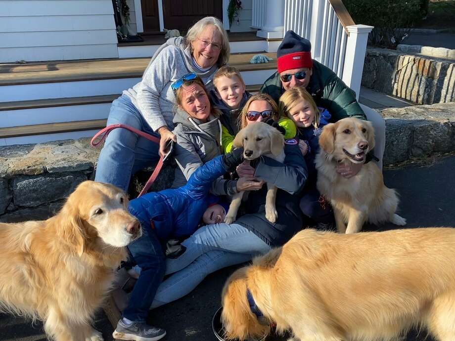 After running from her family home on Friday afternoon Mango was reunited with her family after being found Saturday morning by Pam Zangrillo, top left. Photo: Contributed