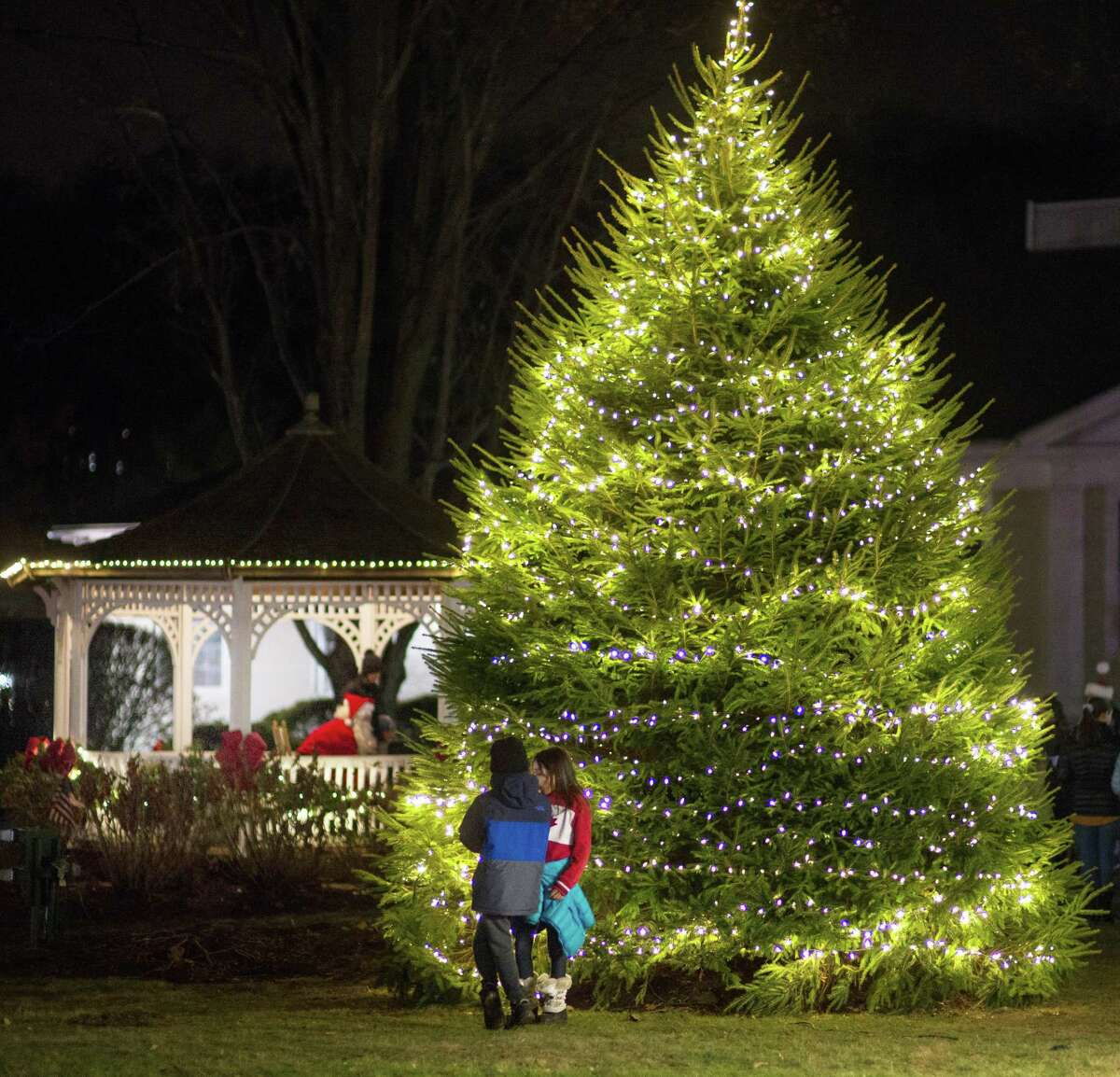 The tree is lit at the Holiday Stroll in Wilton Center on Dec. 6, 2019.