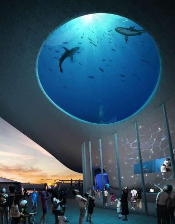 Artist renderings of new Seattle Aquarium Pavilion (Photo: LMN Architects via Seattle Aquarium) Photo: Courtesy KOMO
