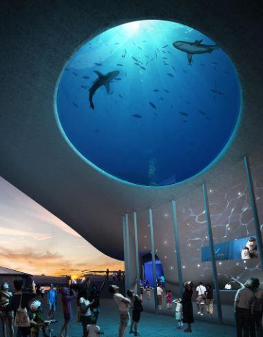 Now that's a shark tank! Seattle approves $34 million toward new aquarium project
