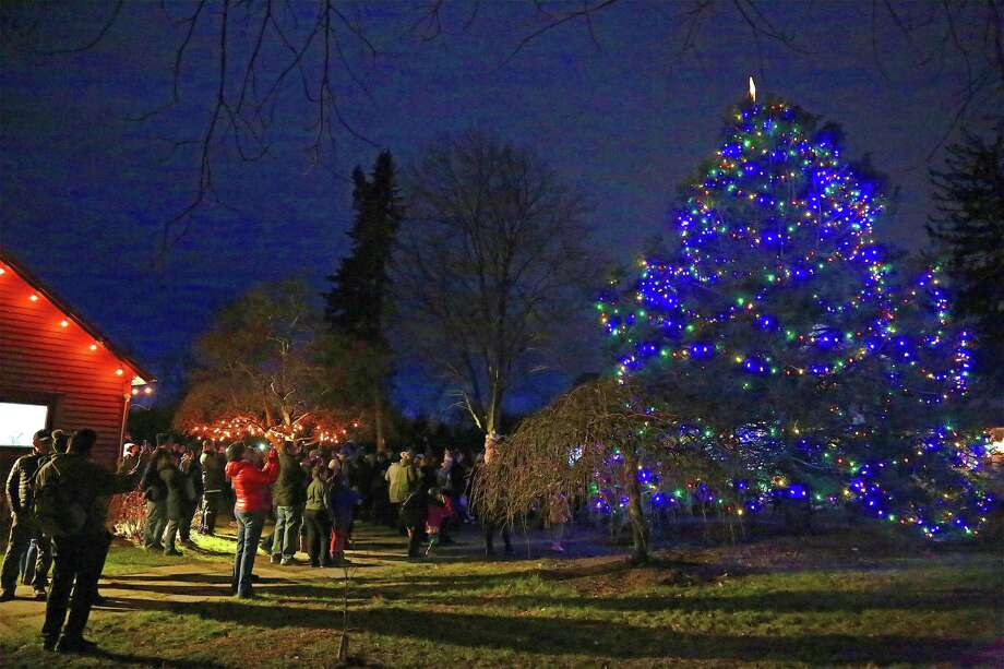 The tree lights turn on just after dark at the tree lighting event at the Wakeman Town Farm on Dec. 6, 2019, in Westport. Photo: Jarret Liotta / For Hearst Connecticut Media / Jarret Liotta / ©Jarret Liotta