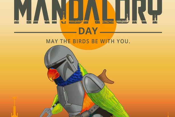 """""""Mandalory Day"""" is happening this weekend at the San Antonio Zoo with buy one, get one admission and freebies for early birds.On Saturday, from 10 a.m. to 2 p.m., guests will buy one, get one free on standard admission ($19.99 for adults, $16.99 for kids) to embark on day inspired by the Disney+ original series """"The Mandalorian."""""""