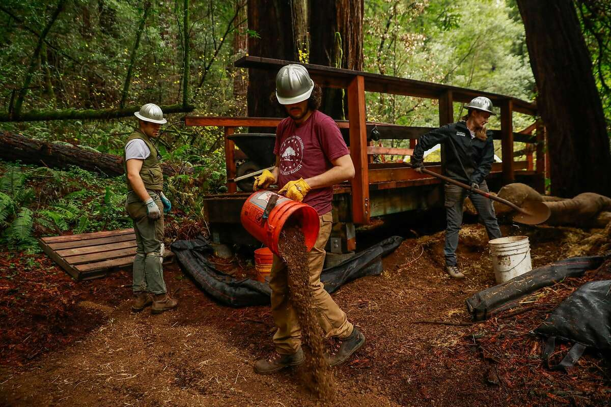 (l-r) Trail construction crew members Rudy Gustafson, Julio Escarce, and Kelly Quimby work to build a new path during renovations at Muir Woods in Mill Valley, California, on Monday, Dec. 9, 2019.
