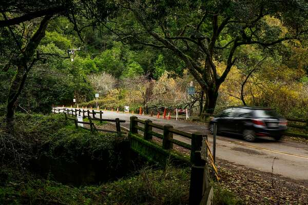 Major push to save Muir Woods salmon run includes creek ...