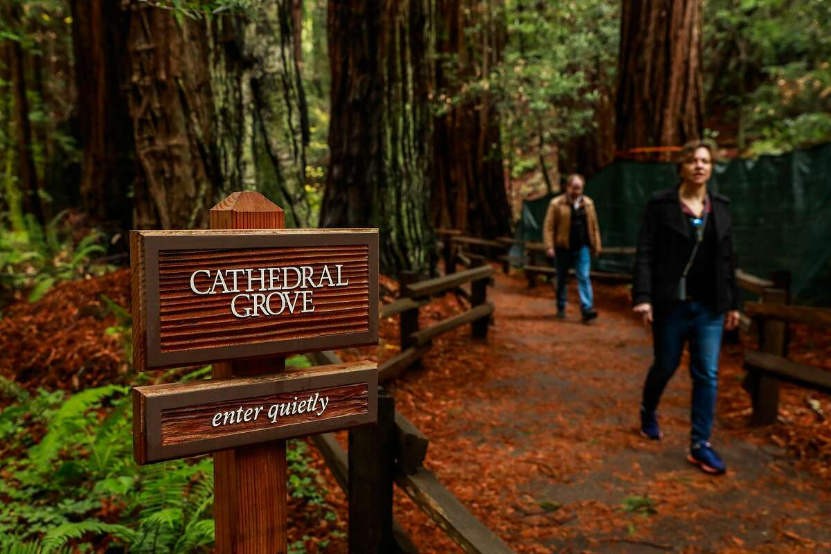 People exit the Cathedral Grove where people are encouraged to limit noise at Muir Woods in Mill Valley, California, on Monday, Dec. 9, 2019.