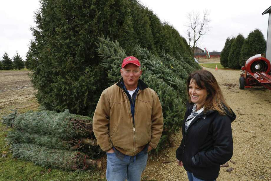 John and Diana Minalt own and operate Conifera Tree Farm in Harvard, Ill. The number of Christmas tree farmers is declining across the U.S. as older farmers retire. Illinois dropped from 212 tree growers in 2012 to 182 farmers in 2017, according to the latest U.S. Department of Agriculture data. Photo: Jose M. Osorio, MBR / TNS / Chicago Tribune