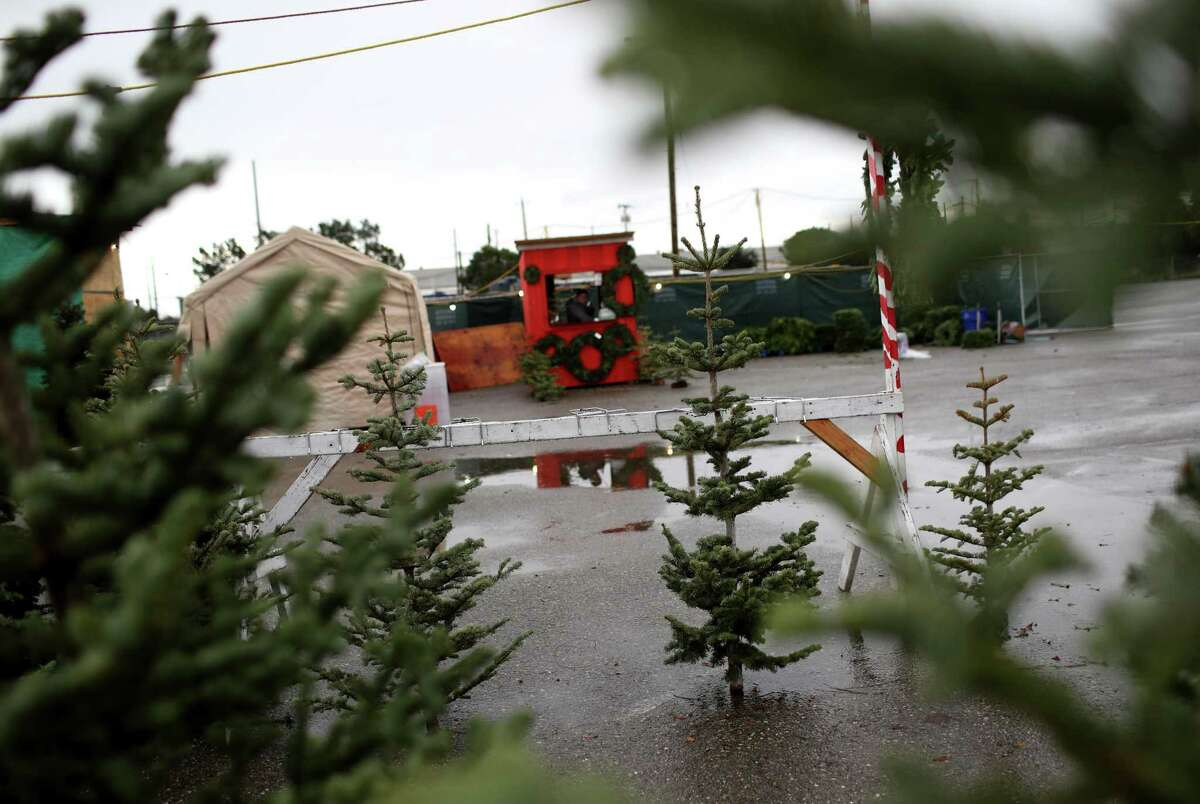 Christmas trees are displayed at Speer Family Farms in Alameda, Calif. Ten years ago during the recession, Christmas tree growers started scaling back their growing operations and now there is a shortage of trees in the United States. According to the National Christmas Tree Association, the average price of a tree was $36 in 2008. In 2018 the price spiked to $78.