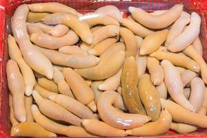 Urechis unicinctus known as penis fish, innkeeper worm or spoon worm at a market in South Korea