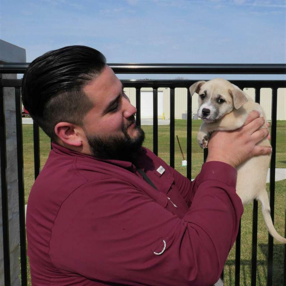 Al Garces,the animal control supervisor at the Deer Park Animal Shelter and Adoption Center, was recently honored with the Warren J. Kilpatrick Award from the Texas Animal Control Association for his innovative approach in getting animals adopted. Photo: Courtesy Photo