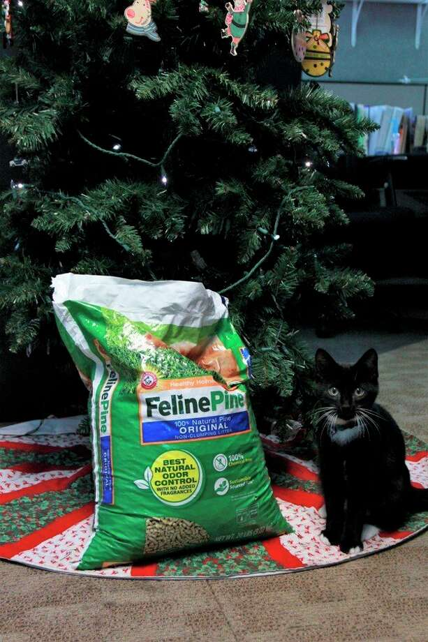 Meceola Central Dispatch 911 mascot, Chief, poses proudly with the first donation of his drive-- a bag of cat litter donated byAshtonresident Camille Rice. (Herald Review photo/Alicia Jaimes)