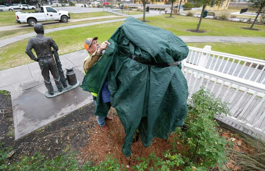 Tomball City worker Mark Tevebaugh covers plants and small trees in the Tomball Railroad Depot Plaza in January 2019 in Tomball. Michael Potter sayd don't forget to thoroughly water and then cover tender plants when temperatures drop below freezing. Covers should extend all the way to the ground to trap the heat. Photo: Steve Gonzales, Houston Chronicle / Staff Photographer / © 2019 Houston Chronicle