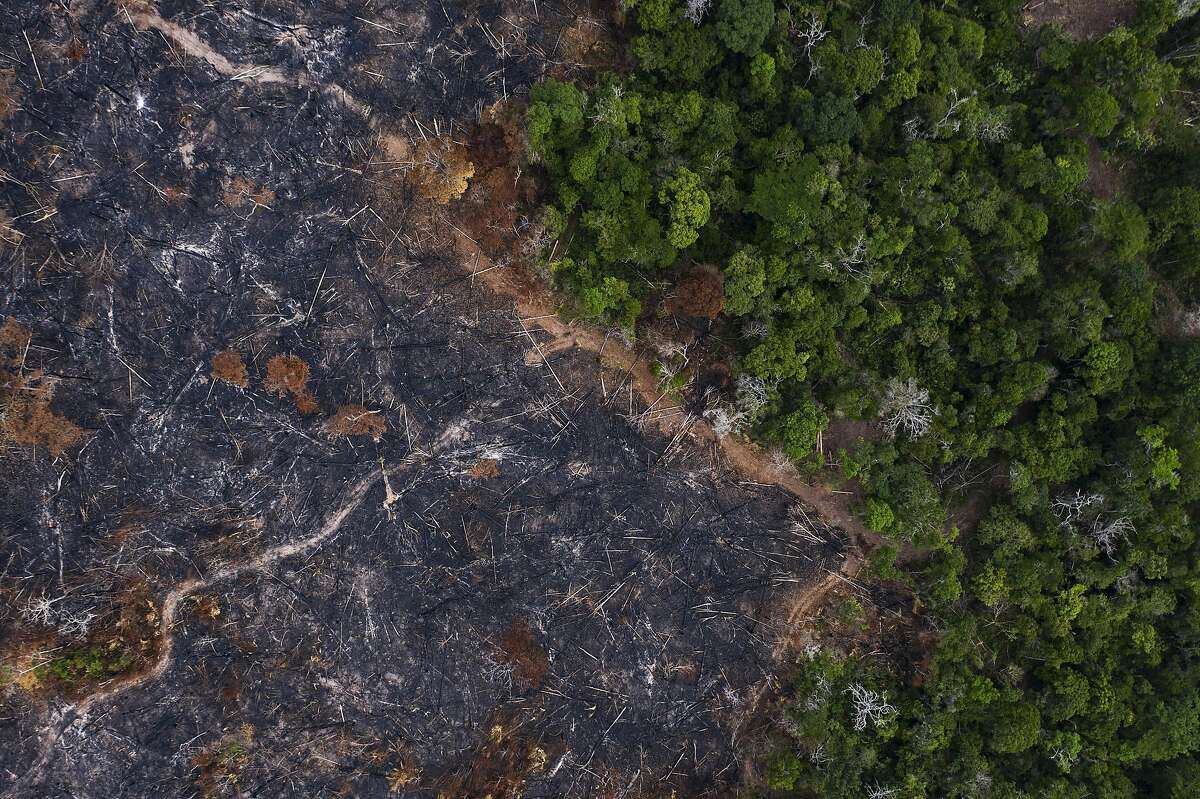 In this Nov. 23, 2019 photo, a burned area of the Amazon rainforest is seen in Prainha, Para state, Brazil. Official data show Amazon deforestation rose almost 30% in the 12 months through July, to its worst level in 11 years. Para state alone accounted for 40% of the loss. (AP Photo/Leo Correa)