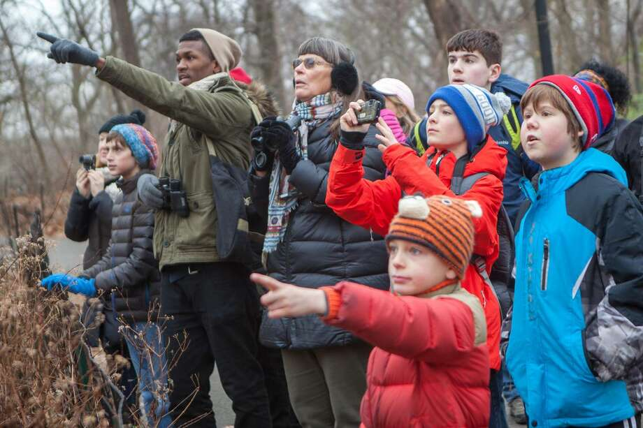 The 2019 Greenwich-Stamford Christmas Bird Count will take place Dec. 15 at Greenwich Audubon Center. Photo: Greenwich.audubon.org