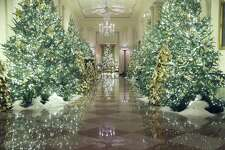 Christmas decorations are on display in the Grand Foyer of the White House on Dec. 2. The trees are festive, a mood the principal resident of the house is not likely to share with his impeachment vote likely next week.