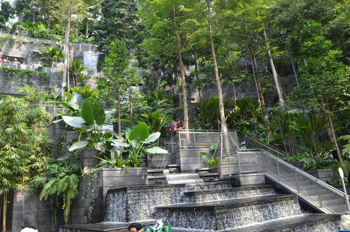 The indoor landscape also includes a climbing trail with staircases that send visitors through different parts of the garden.