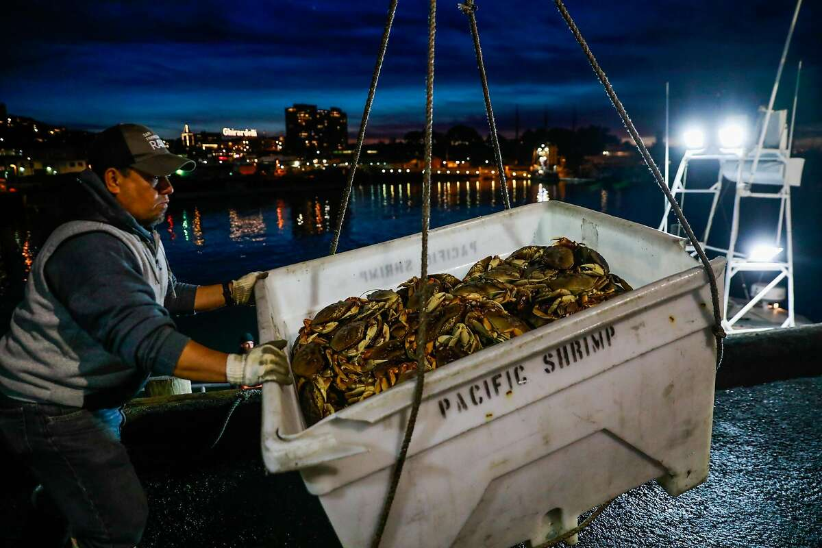 A fisherman handles a container of the first catch of Dungeness crab at Fisherman's Wharf on Pier 45 in San Francisco, California, on Sunday, Dec. 15, 2019.