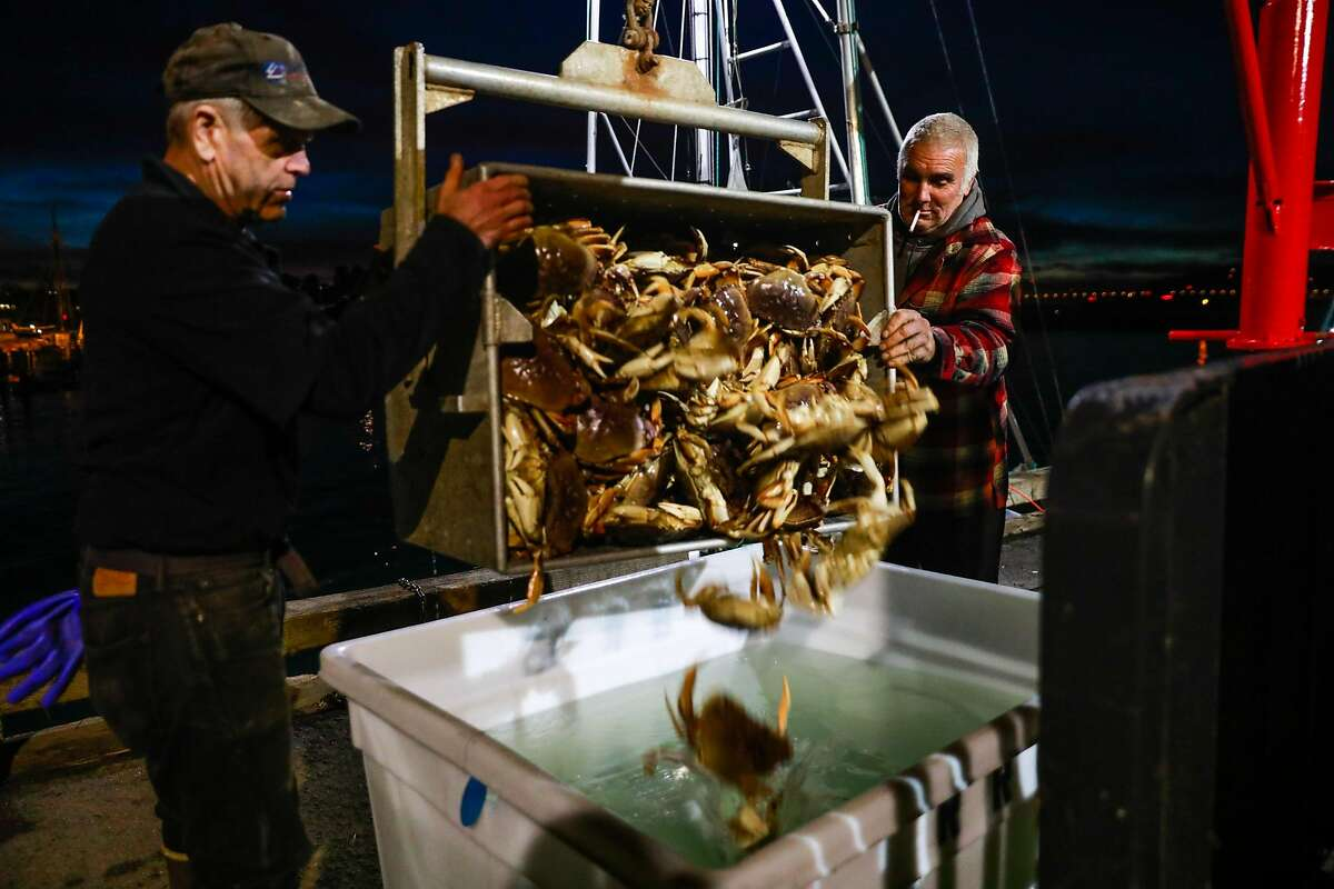 Ken Gerner (left) and Steve (no last name) empty a container of Dungeness crab into a bin of saltwater Fisherman's Wharf on Pier 45 in San Francisco, California, on Sunday, Dec. 15, 2019.