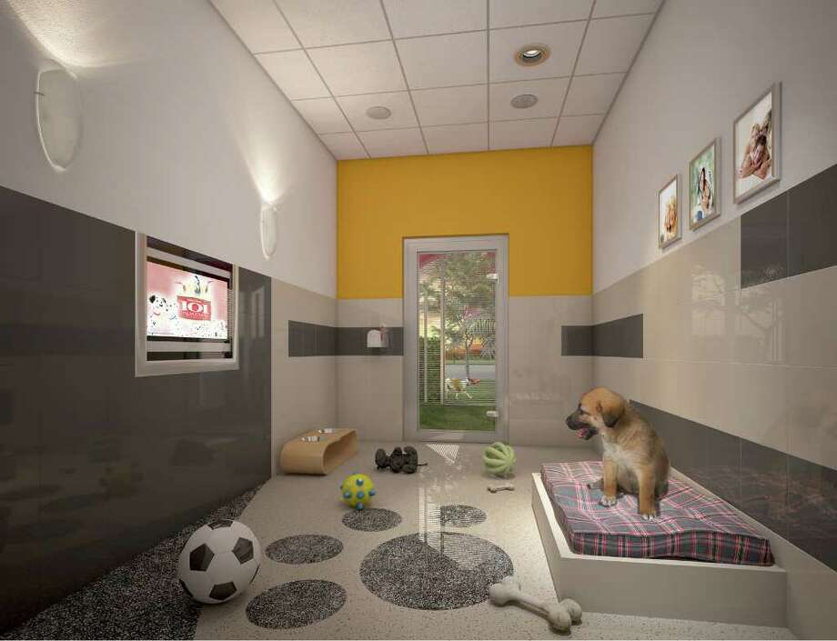 Furry friends have a home at disney world stamfordadvocate for Dog kennels near disney world