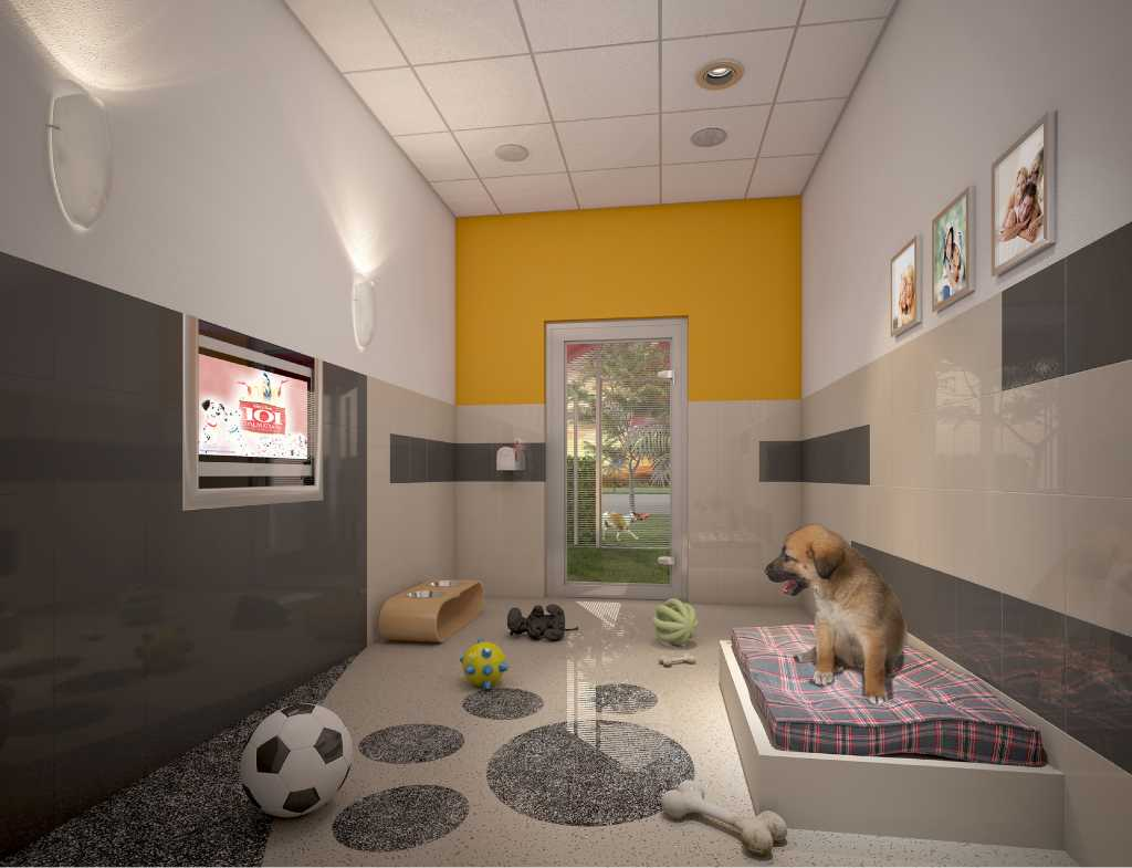 Furry friends have a home at disney world stamfordadvocate for Best hotels for pets