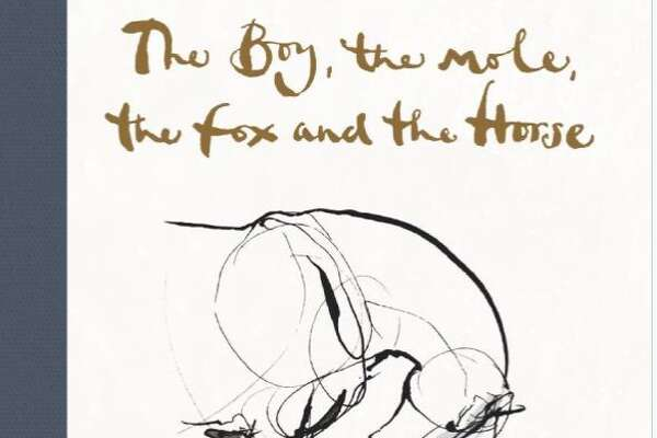 The Boy, the Mole, the Fox and the Horse by Charlie Mackesy.