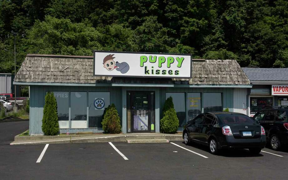 Puppy Kisses at 128 Federal Road before its closing. Photo: H John Voorhees III / Staff Photographer / The News-Times