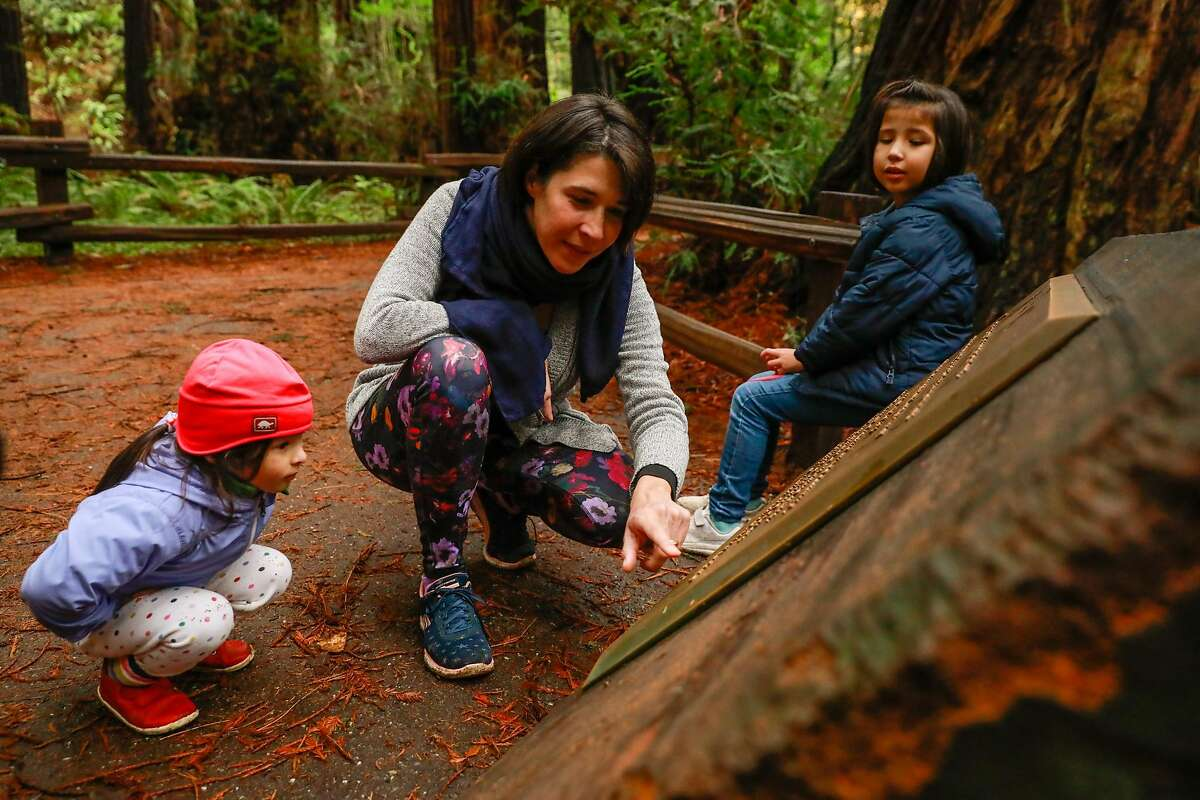 Suzon Lam (center) reads a plaque to Maeve Sung - Mehan, 3, (left) and Perrine Lam , 5, at Cathedral Grove where people are encouraged to limit noise at Muir Woods in Mill Valley, California, on Monday, Dec. 9, 2019.