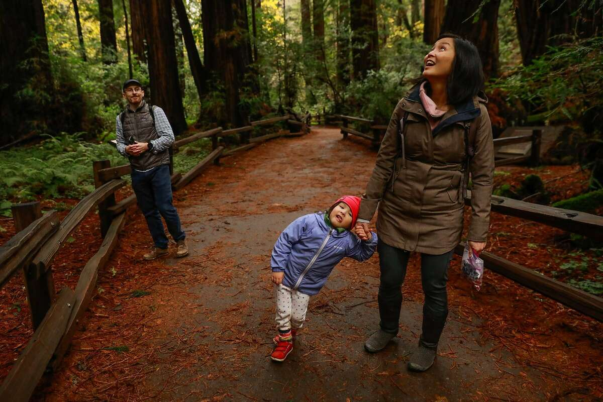 Ryan Mehan, Maeve Sung - Mehan, 3, (left) and Jen Sung walk through Cathedral Grove where people are encouraged to limit noise at Muir Woods in Mill Valley, California, on Monday, Dec. 9, 2019.