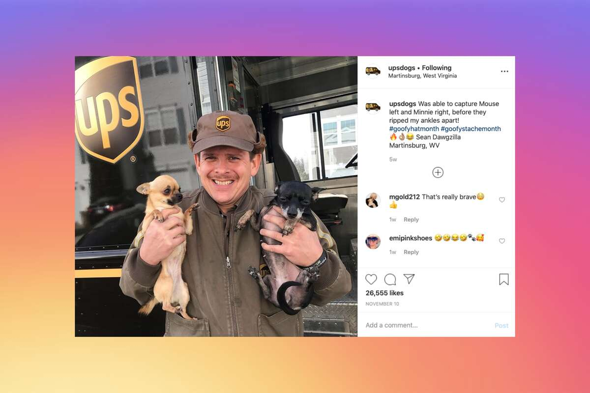 """Sean """"Dawgzilla"""" McCarren (pictured here) manages the Instagram and Facebook accounts UPS Dogs, where he posts photos of UPS delivery drivers and the dogs they see along their routes."""