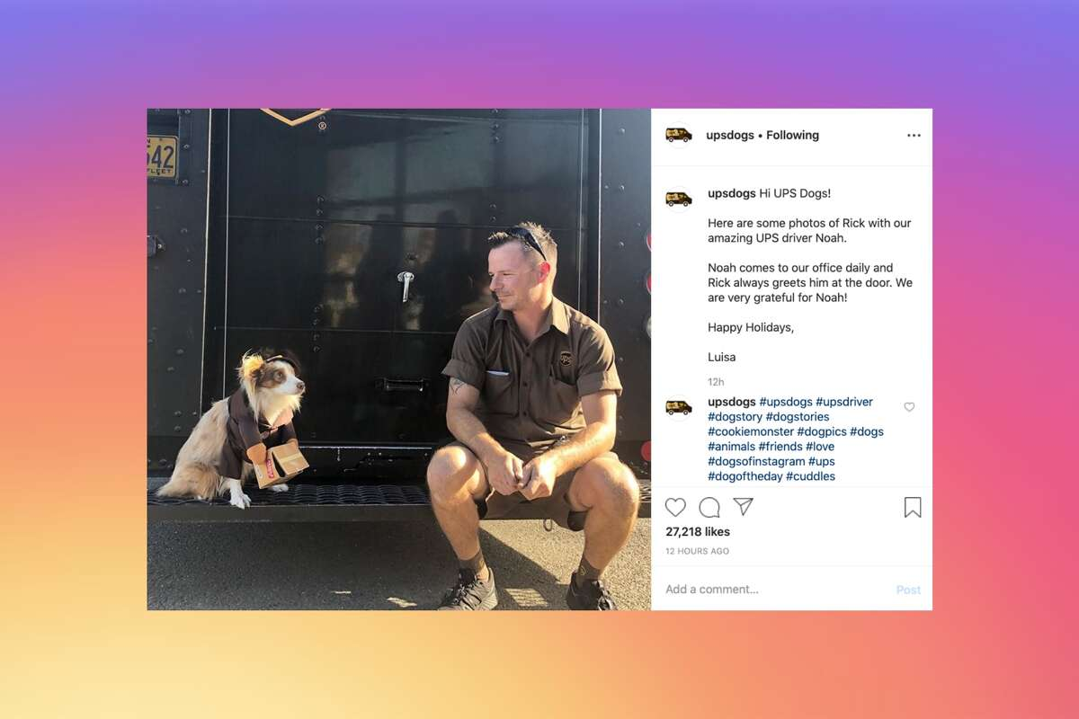 The Instagram and Facebook accounts UPS Dogs show photos of UPS delivery drivers and the dogs they see along their routes.