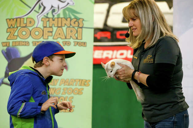 Courtney Pineda, right, with Wild Things ZOOfari from Austin has Michael Sherack, 7, from Long Island, NY, give his best fox impersonation while introducing him to Olaf Jr, an eight-month-old chinchilla at the Texas Wildlife Expo at the San Antonio Stock Show & Rodeo on Tuesday, Feb. 19, 2019. Photo: Marvin Pfeiffer / Express-News 2019