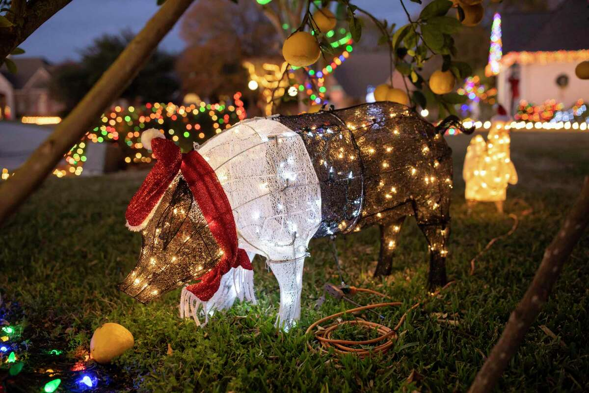 A Christmas light display in the shape of a pig stands on the Vicchio property in Bentwater on Saturday, Dec. 21, 2019. An estimated 30,000 lights are on display which took 10 days to place.