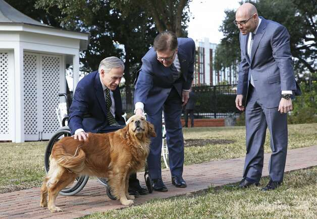 """Pancake"" gets some attention after Gov. Greg Abbott, Lt. Gov. Dan Patrick and Speaker Dennis Bonnen speak at the Governor's Mansion on Jan. 9, 2019. Photo: Tom Reel/Staff Photographer"