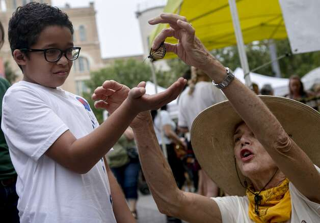 Daivyan Edozie, 9, of San Antonio holds out his hand as Monika Maeckle, director of the 4th annual Monarch Butterfly and Pollinator Festival, places a tagged butterfly in his hand to at the Pearl in San Antonio on Oct. 20, 2019. Photo: Josie Norris/The San Antonio Express-News