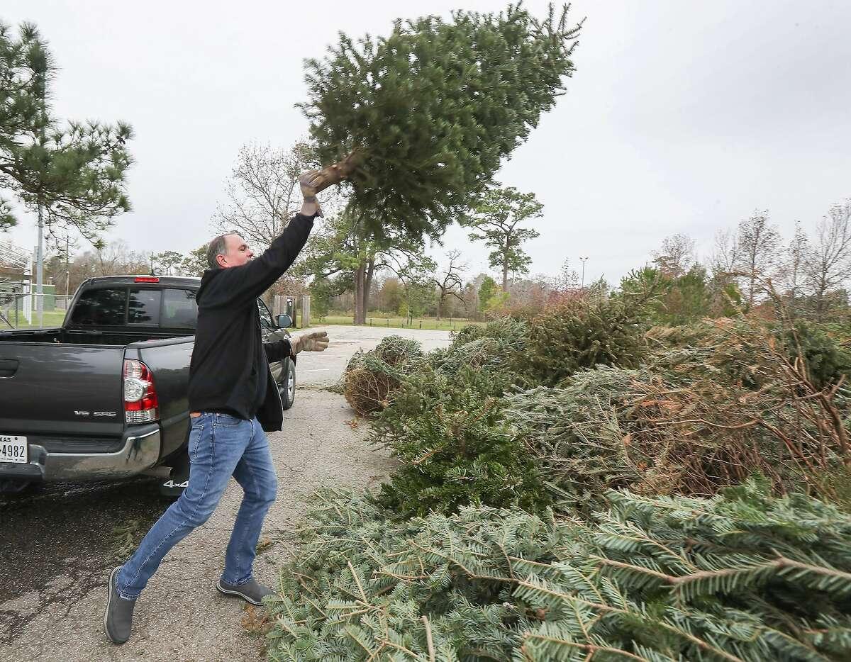 Matt Flukinger drops off his Christmas Tree at Memorial Park in Houston, Texas.