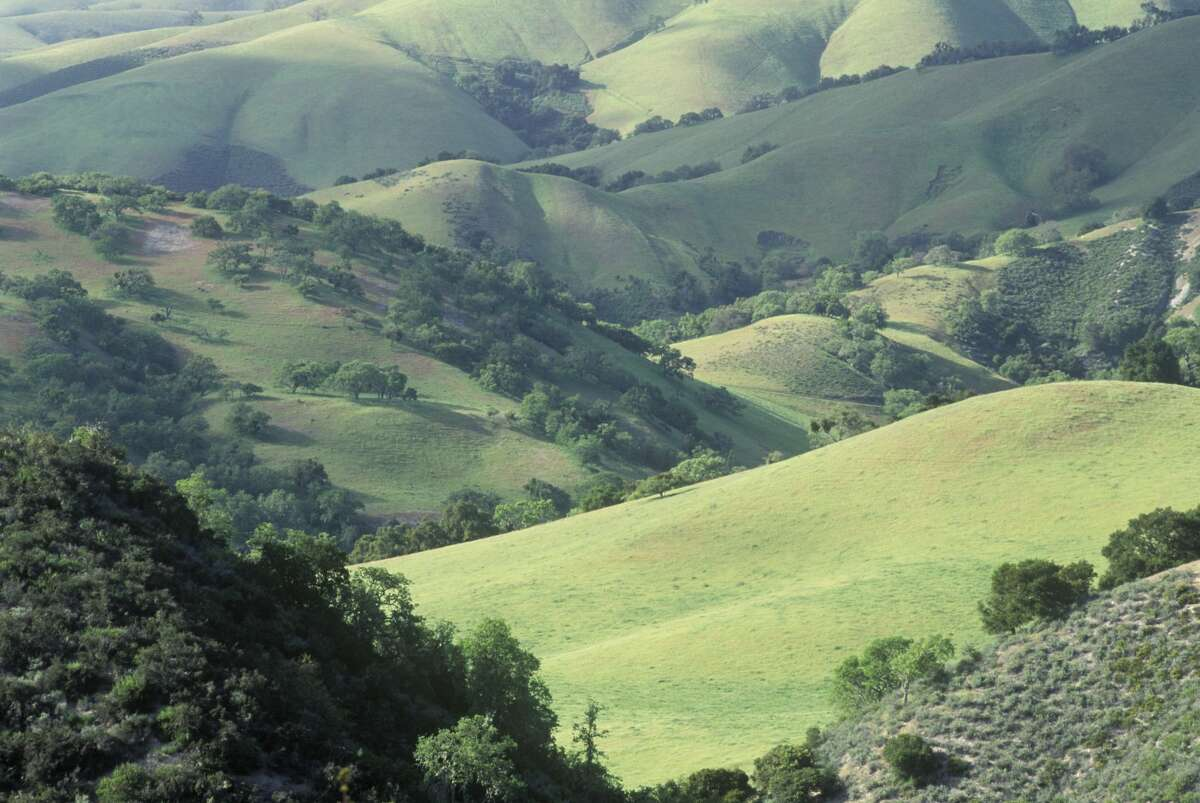 The Carmel Valley, where Moore once owned over 20,000 acres. His ranch entertained the elite social climbers of California society with weekend barbecues and polo games.