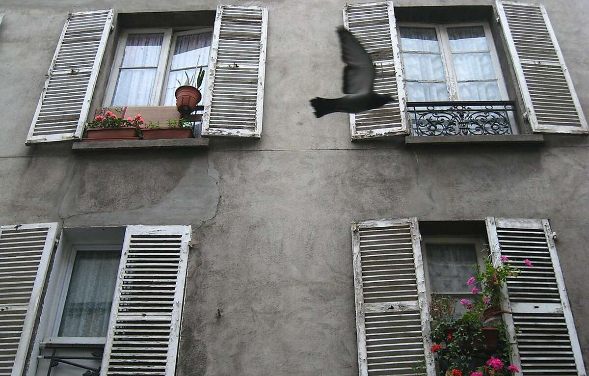 PARISTRAVEL_003_dj.jpg A pigeon flies by apartment windows on Rue Biot in the 17th arrondissement in Paris, France. Picture taken on May 12, 2007. Dan Jung / The Chronicle