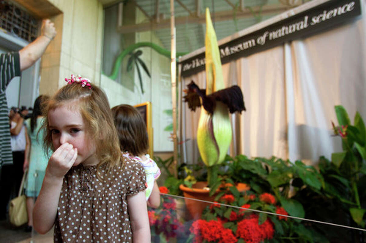 July 23, 2010: Annie Watts, 5, holds her nose as she walks through the