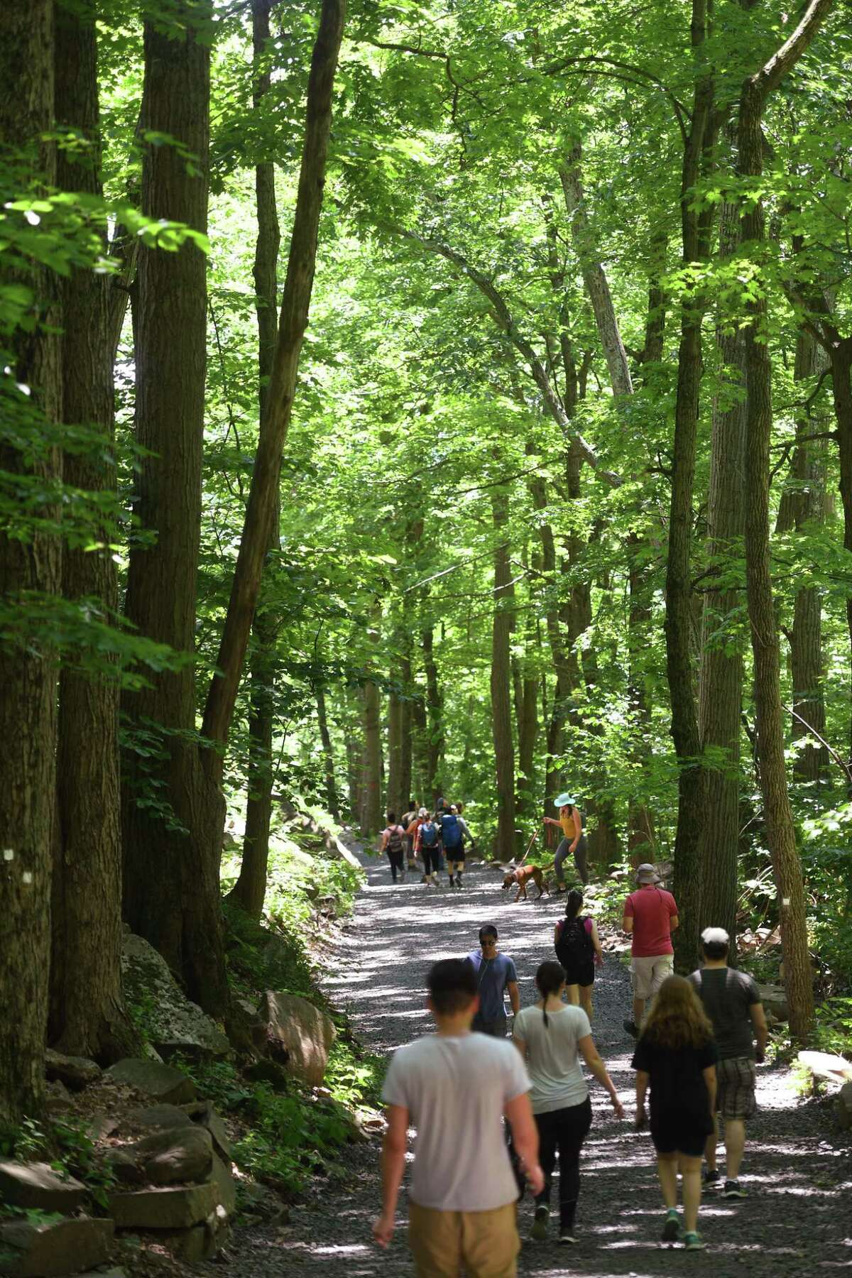 Visitors head down the extremely popular Tower Trail at the recently re-opened Sleeping Giant State Park in Hamden on Sunday, June 23, 2019.