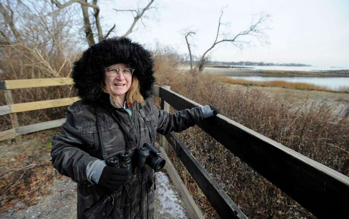 Vanessa David of Stamford, a five year birding enthusiast, observes a bald eagle nesting at the Cove Island Wildlife Sanctuary in Stamford, Conn. on Dec. 21, 2019. The Connecticut Audubon Society's Birds of 2019, a list created each year to spur interest in conservation, because the state's bird population has fallen dramatically since 1970. Based on the reports of the society's many volunteers, the top birds of 2019 are the barred owl, sandhill crane and piping plover, but it also highlights many of the birds you find in the sanctuary.