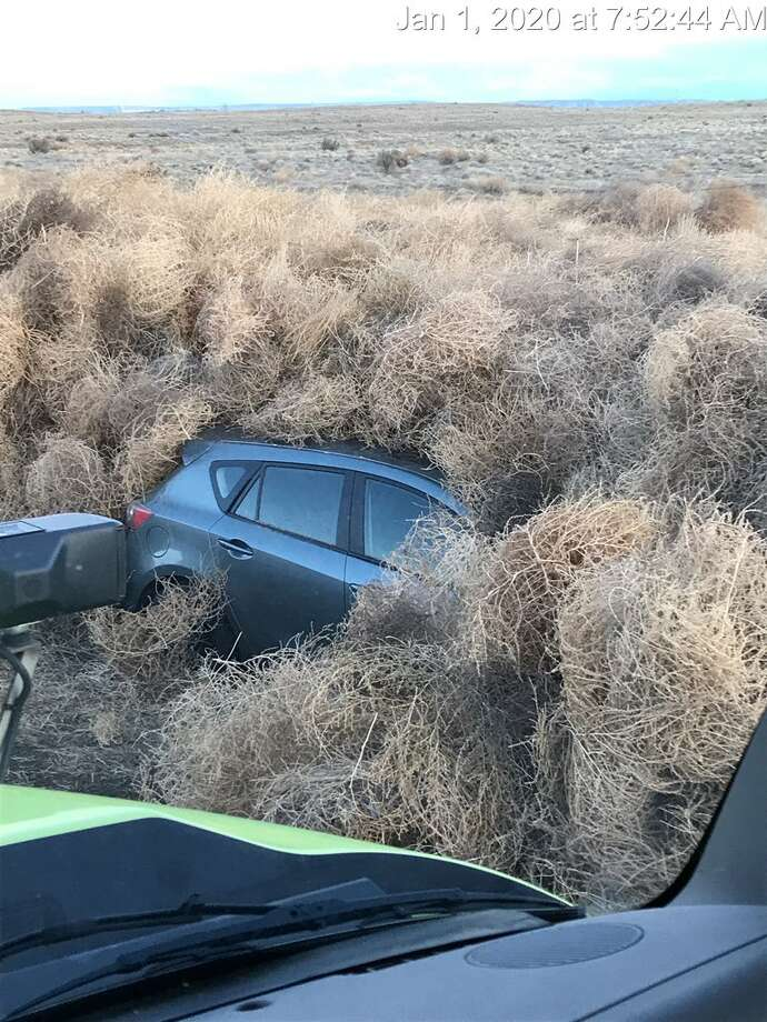 Some people spent part of their New Year's Eve trapped on a Washington state highway after tumbleweeds blocked their route, authorities said. Photo: Washington DOT