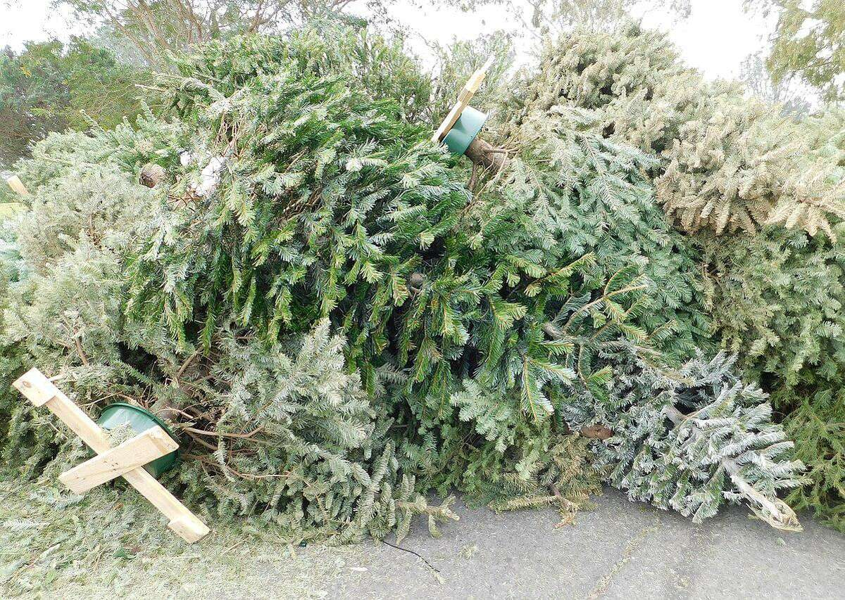 Mayor Benjamin G. Blake is encouraging residents to recycle their trees.