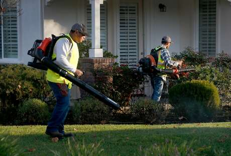 Pedro Lopez (left) and Omar Barajas from Vaca Landscaping use gas powered leaf blowers to clear a residential complex in Novato, Calif. on Friday, Jan. 3, 2020. Novato city leaders are considering a ban on gas powered landscaping equipment.