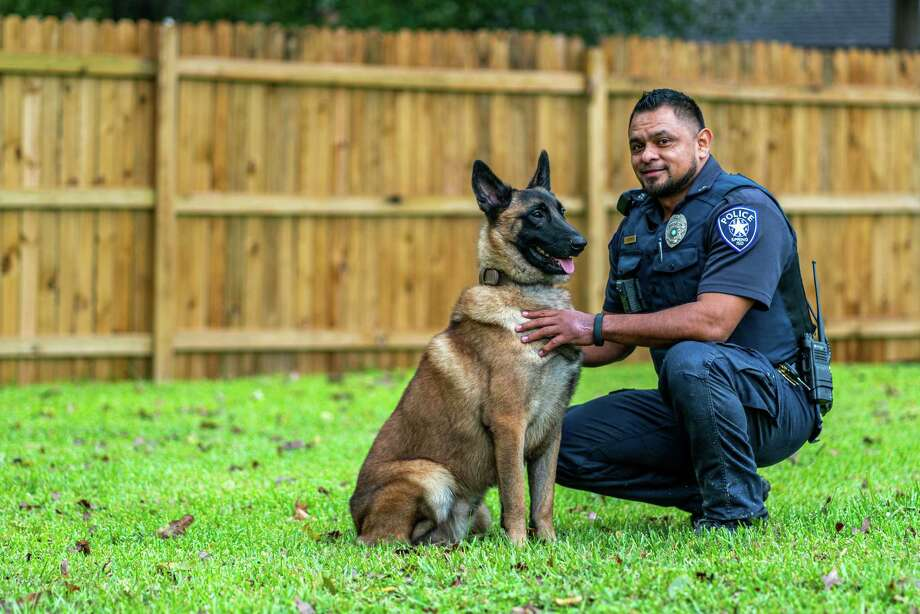 Brix, the Spring ISD Police Department's newest K9, a german shepherd who specializes in detecting explosives. His handler is Officer Juan Estrada, who has served with the Spring ISD Police Department for almost five years. Photo: Courtesy Of Spring ISD