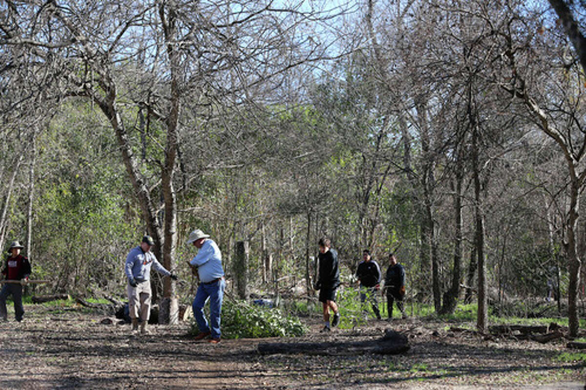 Volunteers work on clearing invasive plants, trees and debris at the historic Headwaters Sanctuary near the University of the Incarnate Word on Saturday, Jan. 4, 2020. A group of dedicated naturalists gathered in the morning and gradually cleared away non-native vegetation such as ligustrum that choke out native trees like live oak along with 53-acre sanctuary site located on the grounds of UIW. The sanctuary is the site of the Blue Hole or also known as Yanaguana Springs which is believed to be the origin spring for the San Antonio River. The sanctuary is overseen by the Sisters of Charity of the Incarnate Word.