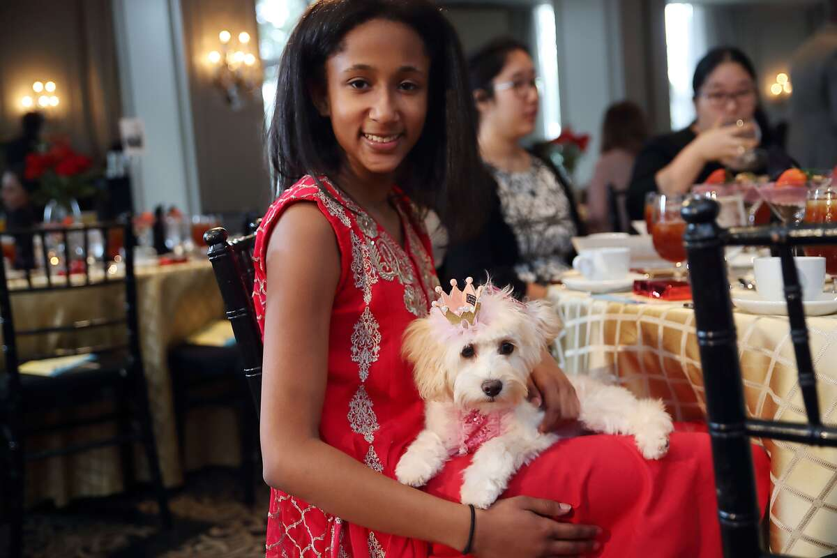 Nicole Mayberry appears with her dog Goddess. Mayberry was recently crowned the first Teen Universe Pre-Teen Texas.