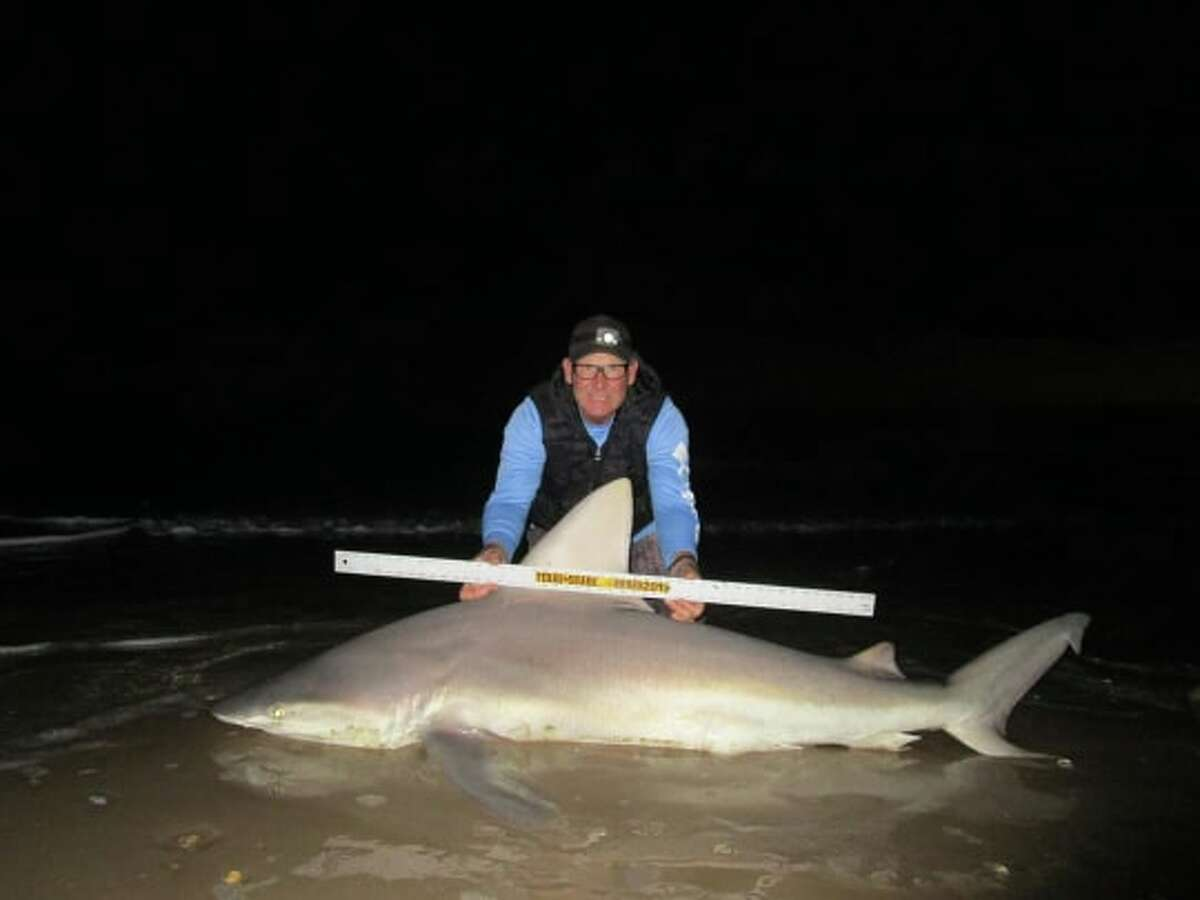 Ron Richmond caught a 7-foot-7-inch sandbar shark in 45-degree weather on Dec. 30 while out at Matagorda Bay, which is around 80 miles northeast of Corpus Christi.