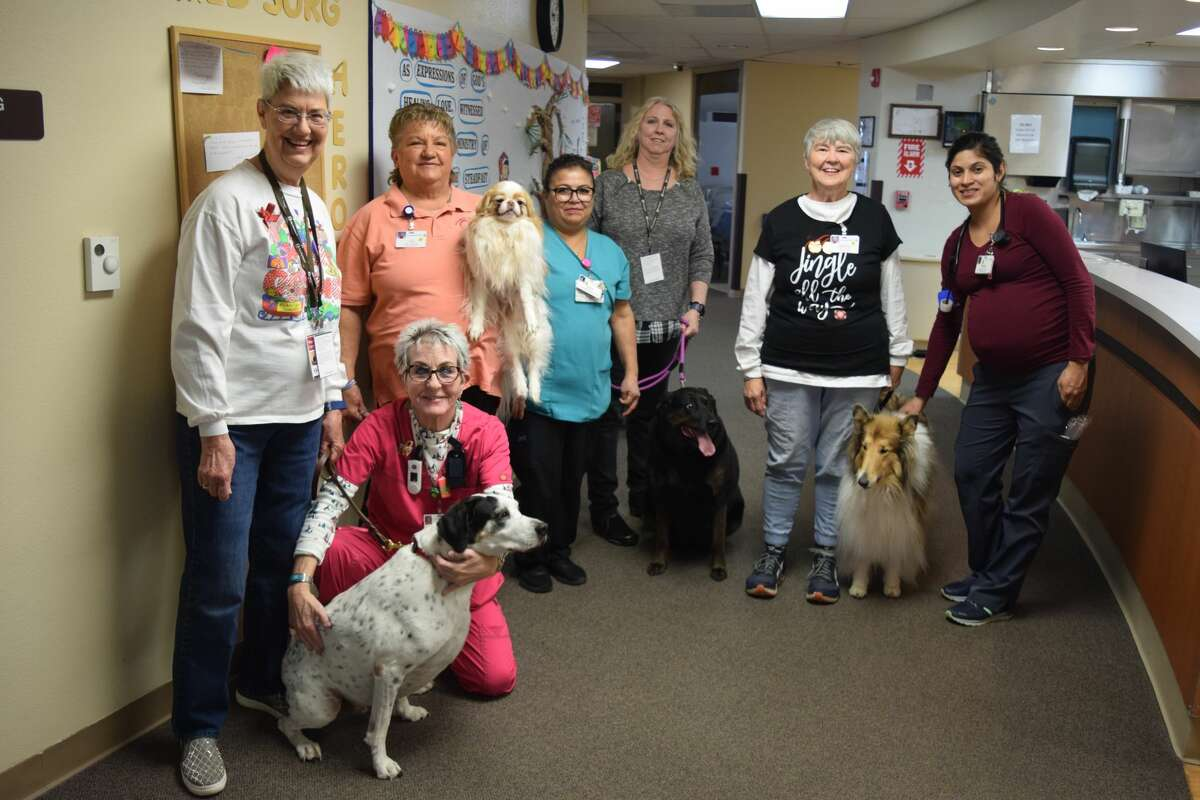Animal Therapy group, Pet Pals, the Furry Therapists, have now partnered with Covenant Health Plainview to offer services to patients and caregivers. Pictured from left to right are Neysa Carmichael and Boo, Registered Nurse Cindy Tye, CJ Jacobs and Buddy Holly, Andreanna Ortiz, Kimberly Prayer and Troubles, Regina Edwards and Bree-Z and Registered Nurse Veronica Griego.
